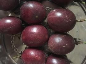 百香果可以和柚子一起吃吗