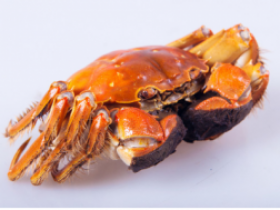 螃蟹和百香果能一起吃吗