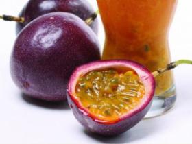 百香果饮料厂家一般收购紫果还是黄金果