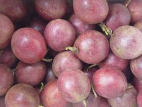 咽喉炎可以吃百香果吗