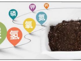 为何百香果种植户越来越喜欢蚯蚓粪肥