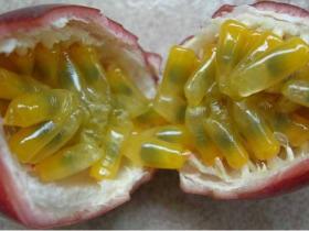 低血压可以吃百香果吗