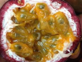 百香果的籽可以吃吗,百香果的籽吞还是嚼碎