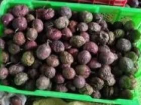 云南果农哭着把烂果扔掉,惨不忍睹的百香果市场