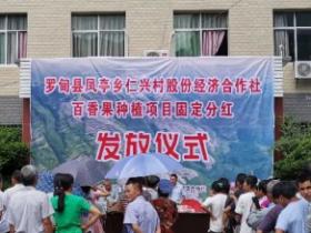 罗甸县凤亭乡仁兴村百香果种植项目喜分红