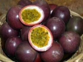 英德市波罗镇打造百香果特色农业产业