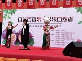 贵州黄平首届且兰百香果采摘节嗨翻天