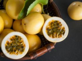博白种植百香果2.7万亩