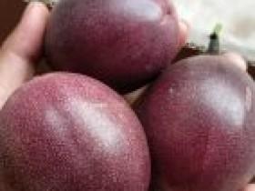 元阳县牛倮村打造百香果产业促农增收