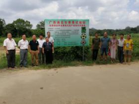 隆林县农业农村局到浦北考察百香果种植基地