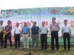 贵港市隆重举行百香果丰收季暨百香果采摘节活动