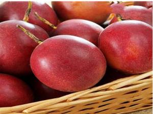 百香果哪个品种最好吃
