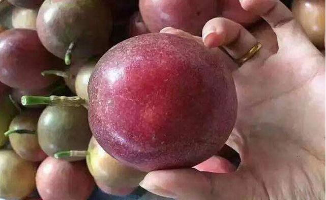 百香果大果好还是小果好