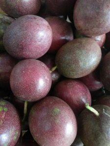 北京地区能种百香果吗