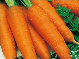 百香果和胡萝卜相克吗