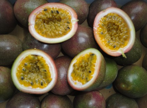 百香果树最多能活几年