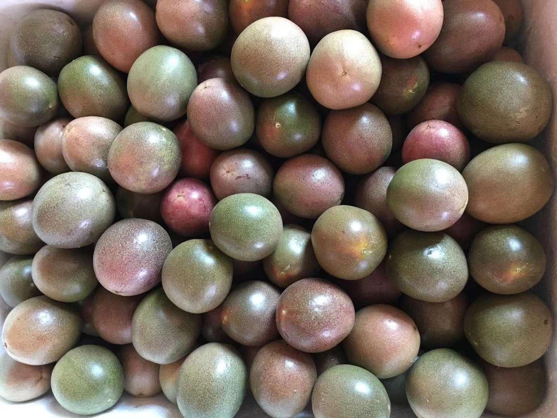 都说百香果不好种,为什么那么多果农会坚持种百香果