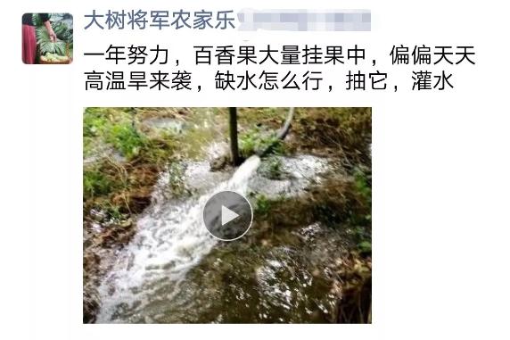 河水快枯,遇上干旱,百香果种植户该怎么办