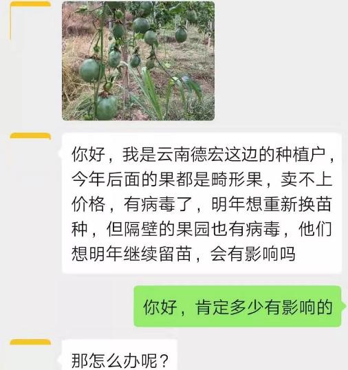 隔壁百香果园有病毒病,影响到自己新种,怎么办?