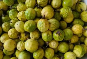 蜜香黄金百香果,值得期待的新品种